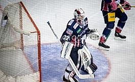 Eishockey / EHC Eisbaeren Berlin vs. Thomas Sabo Ice Tigers - 13.Spieltag / 20.10..2019
